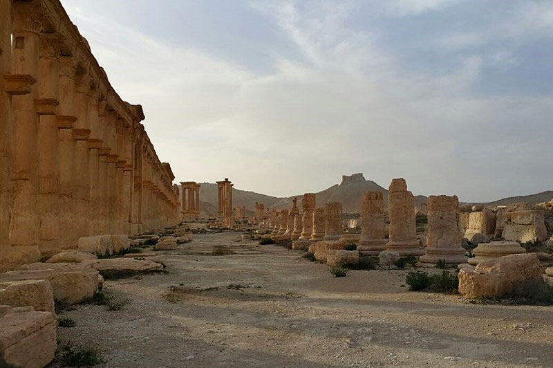 Palmira liberata, 2016.
