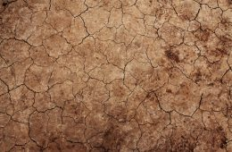cracked-earth-texture