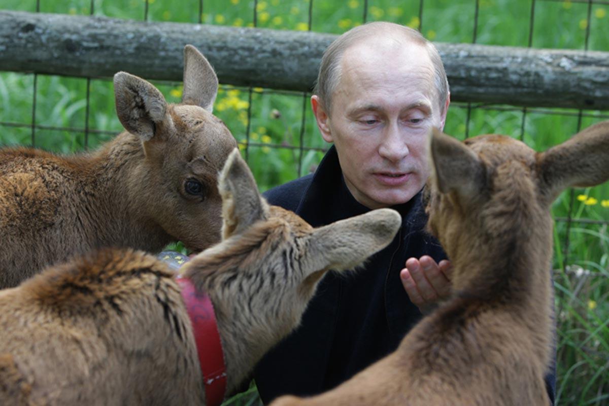 https://thesubmarine.it/wp-content/uploads/2016/10/Putin_animals.jpg
