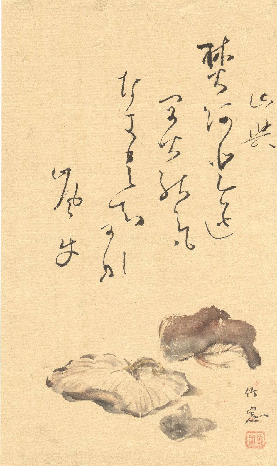 japanpilz2