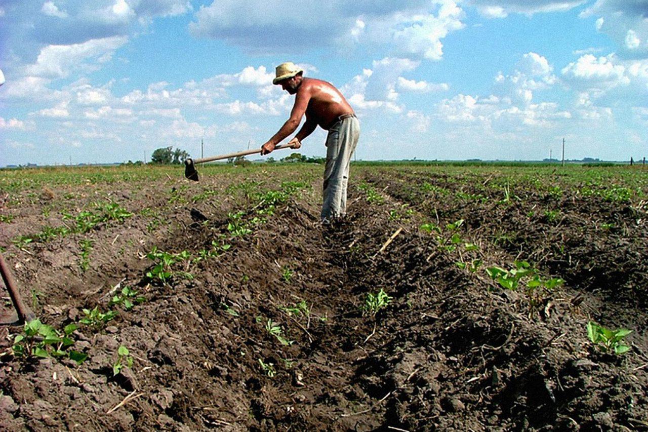 https://thesubmarine.it/wp-content/uploads/2017/02/Agricultura_en_Uruguay-1280x853.jpg