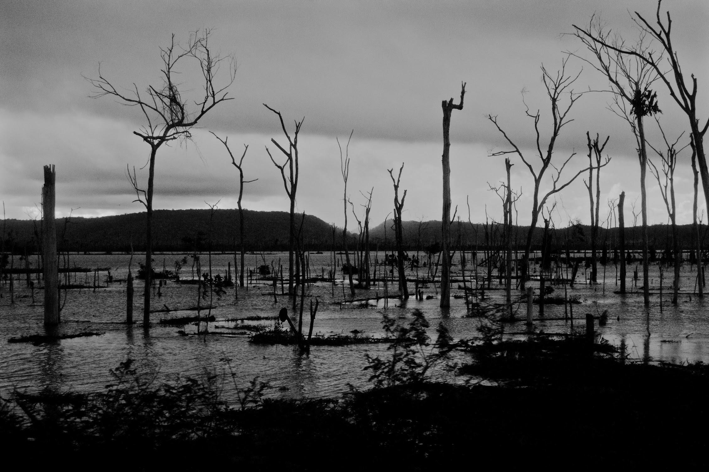 amazonia-alluvione