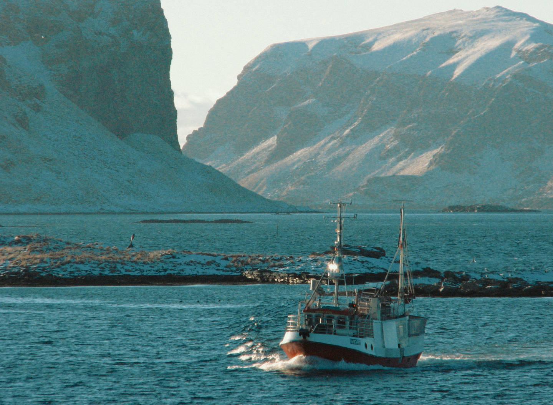 foto cc Einar Stamnes