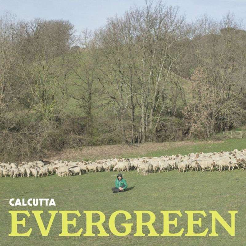 calcutta-evergreen