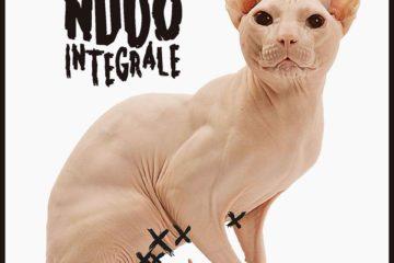 nudointegrale