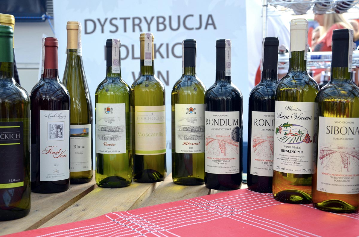https://thesubmarine.it/wp-content/uploads/2018/07/019_eine_auswahl_verschiedener_weine_aus_sud-polen_und_schlesien__2013___wines_of_poland.jpg